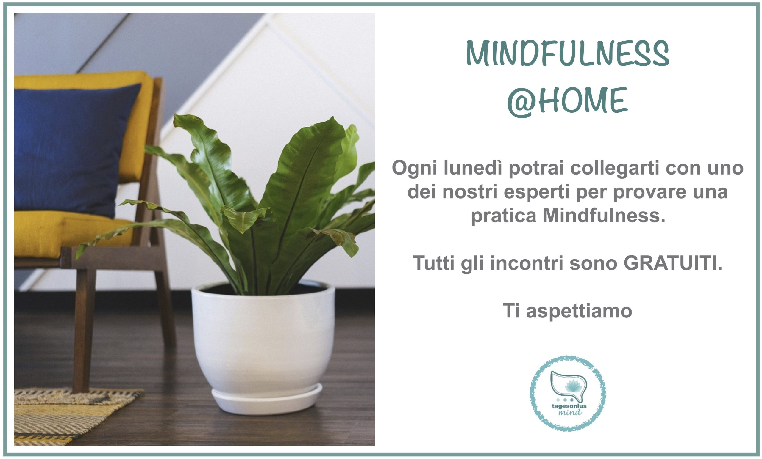 mindfulness @ home, mindfulness, online, evento gratuito, webinar
