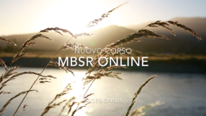 mbsr, mindfulness, mindfulness firenze, centro mindfulness, meditazione, istruttore, centro clinico, tages, tages onlus